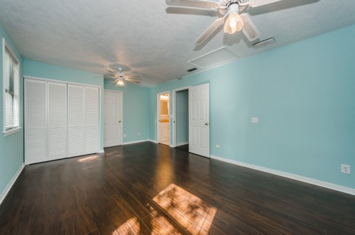 palm harbor rental backpage